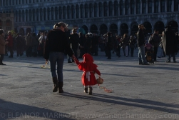 Venice Carnival-56